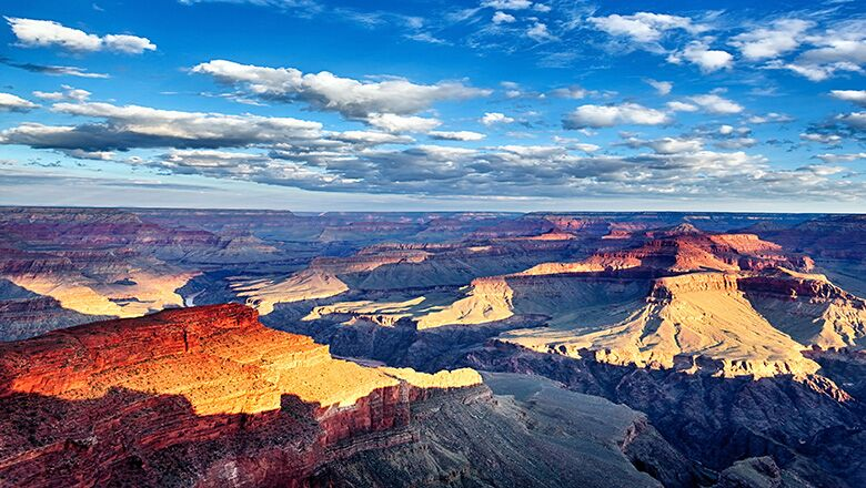 Grand Canyon By Bus Tours From Las Vegas · Choosing A Trip