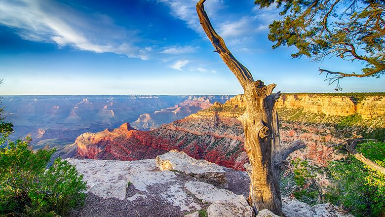 Grand Canyon Trail Of Time Allows People To Learn More About The Evolution Of The Canyon