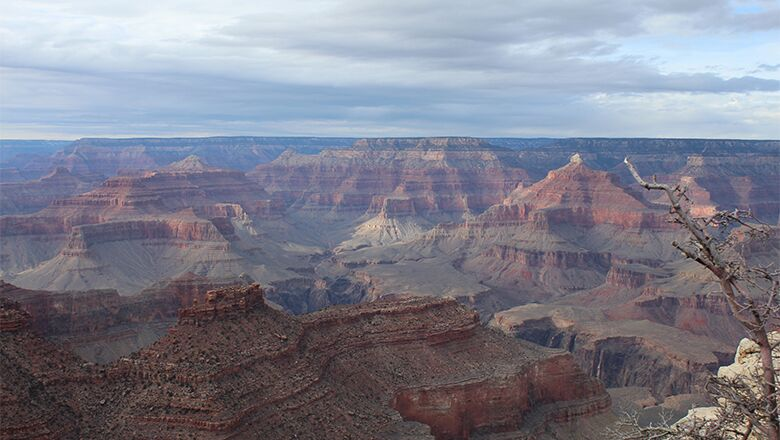 Grand Canyon Tours Are Safe Traveling For Kids