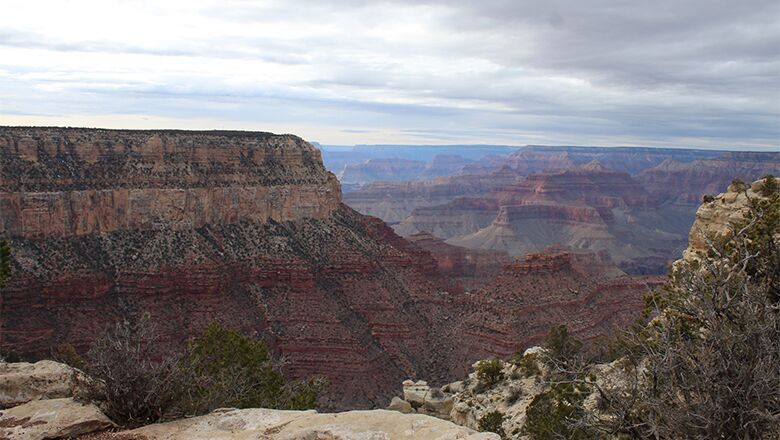 Grand Canyon Bus Trips From Las Vegas · Why You Should Be Onboard