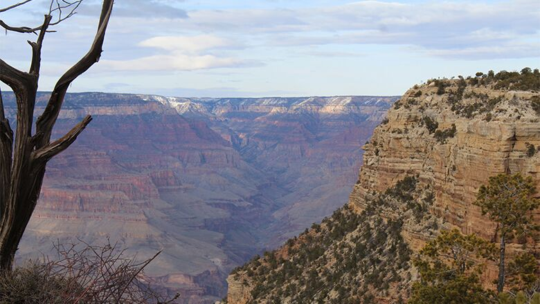 Looking to Make Memories? Book Travel With One Of The Las Vegas Bus Tours To The Grand Canyon