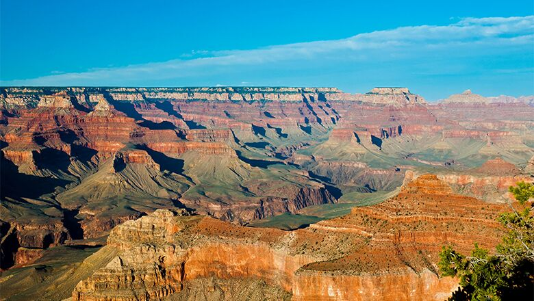 Grand Canyon Bus Tours From Las Vegas Operate 7 Days Per Week