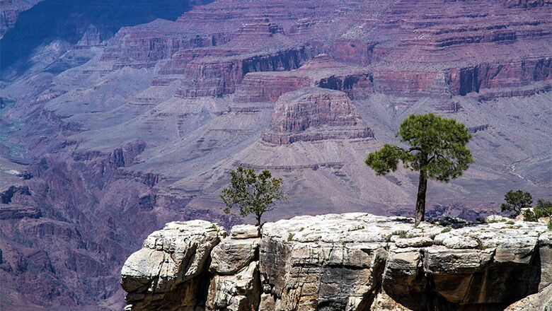 Travel Adventure For Vegas Vacationers Includes Grand Canyon Tours