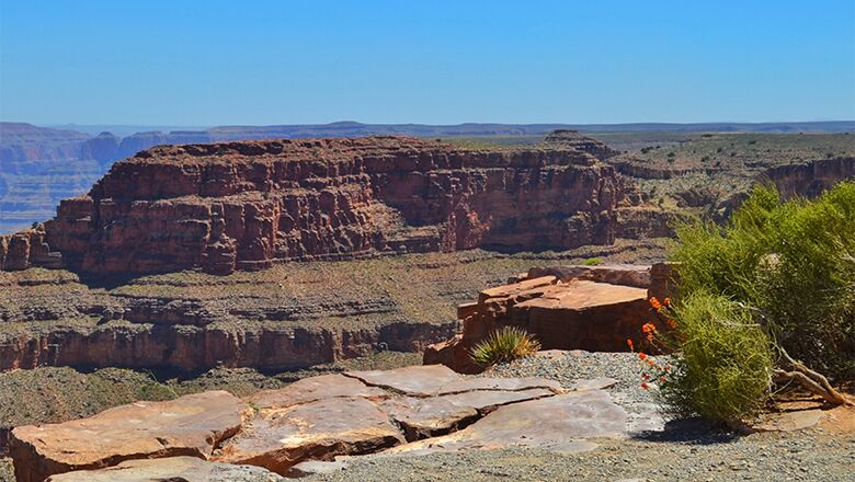 Take A Las Vegas To Grand Canyon Tour And Learn More About The Havasupai Tribe