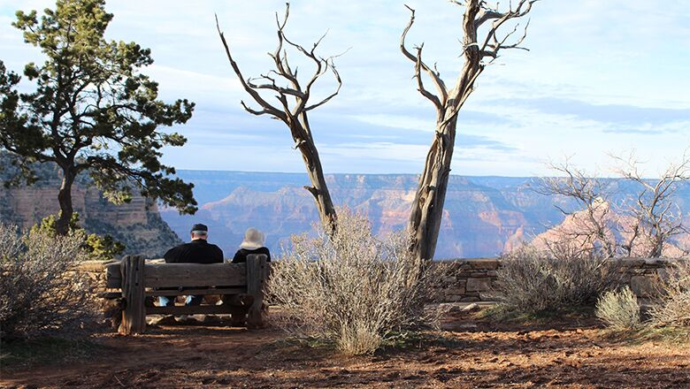 Visit Spectacular Grand Canyon National Park on a South Rim tour.