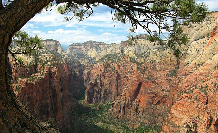 View into Zion Canyon from the top of Angel's Landing, a popular hike in Zion National Park.