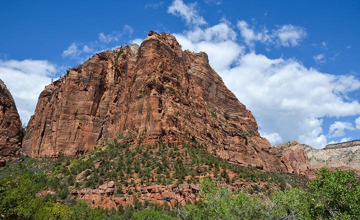 View from the bottom of a canyon in Zion National Park looking upward to an overlook point.