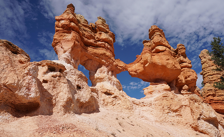 Intricate and tall rock formations in Bryce canyon