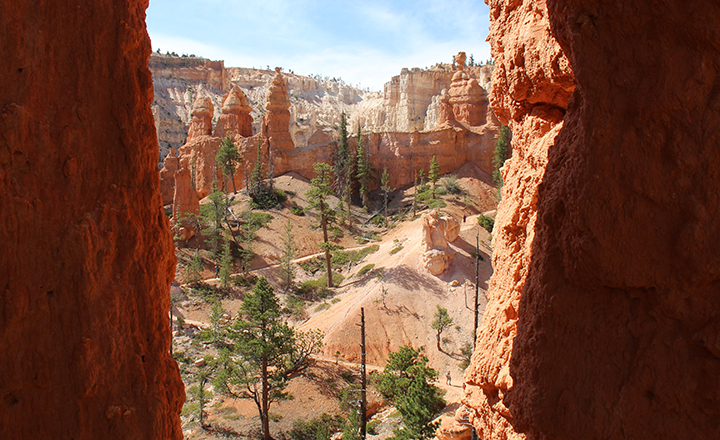 Bryce and Zion National Parks have views of spires like these.
