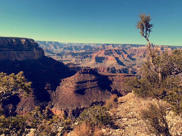 A tour group overlooks the Grand Canyon